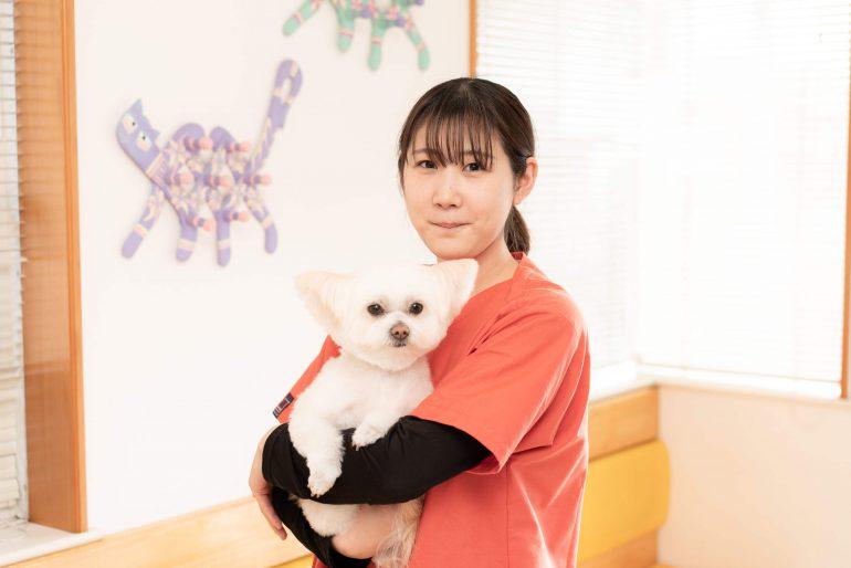 トリマー兼動物看護士